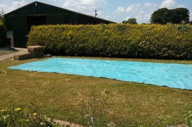 bale-hay-swimming-pool-1