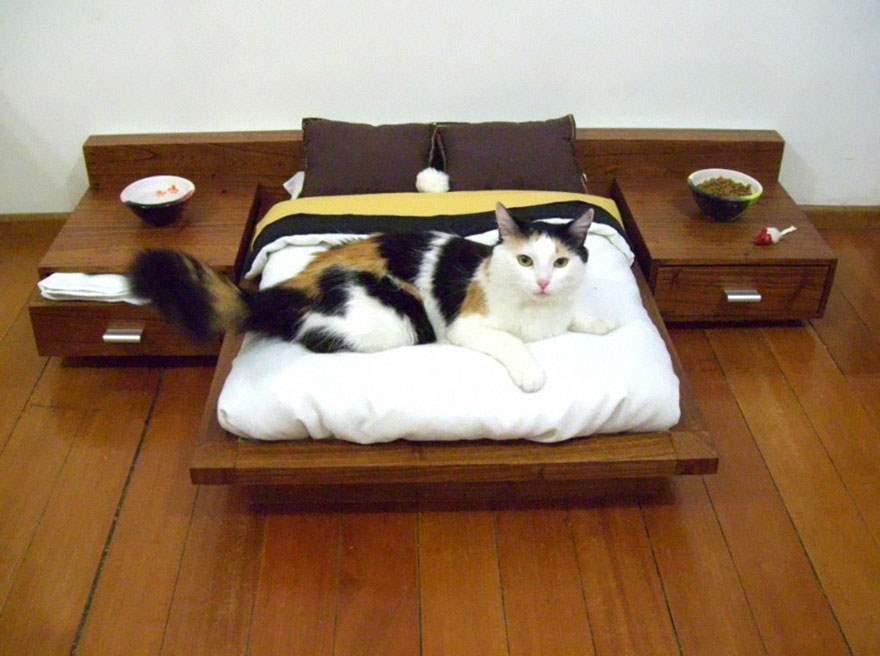 cat-furniture-111