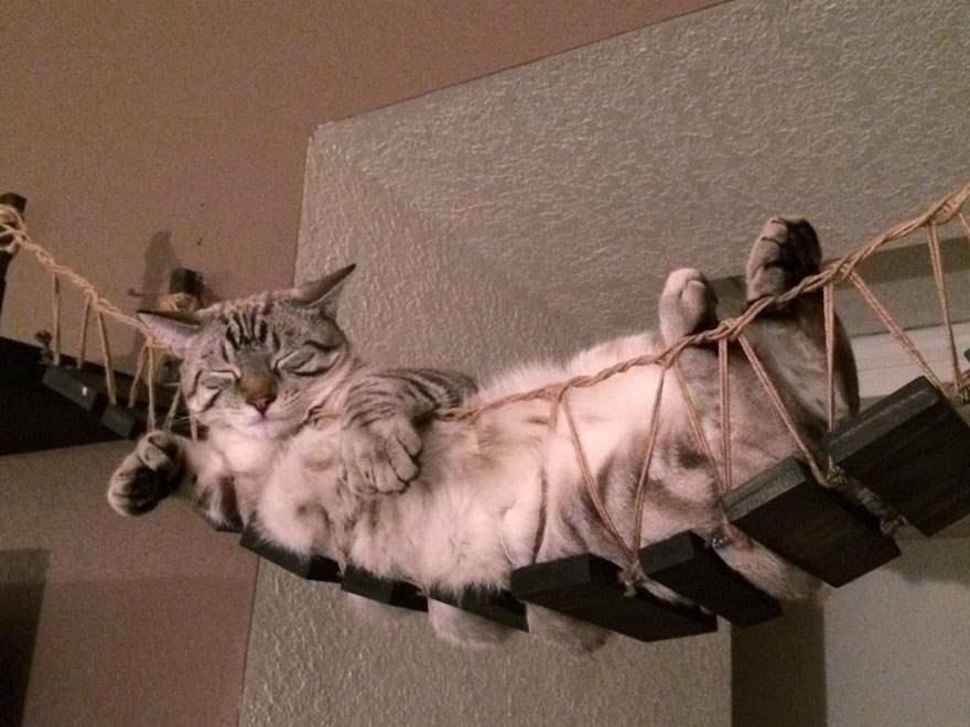 cat-furniture-creative-design-11