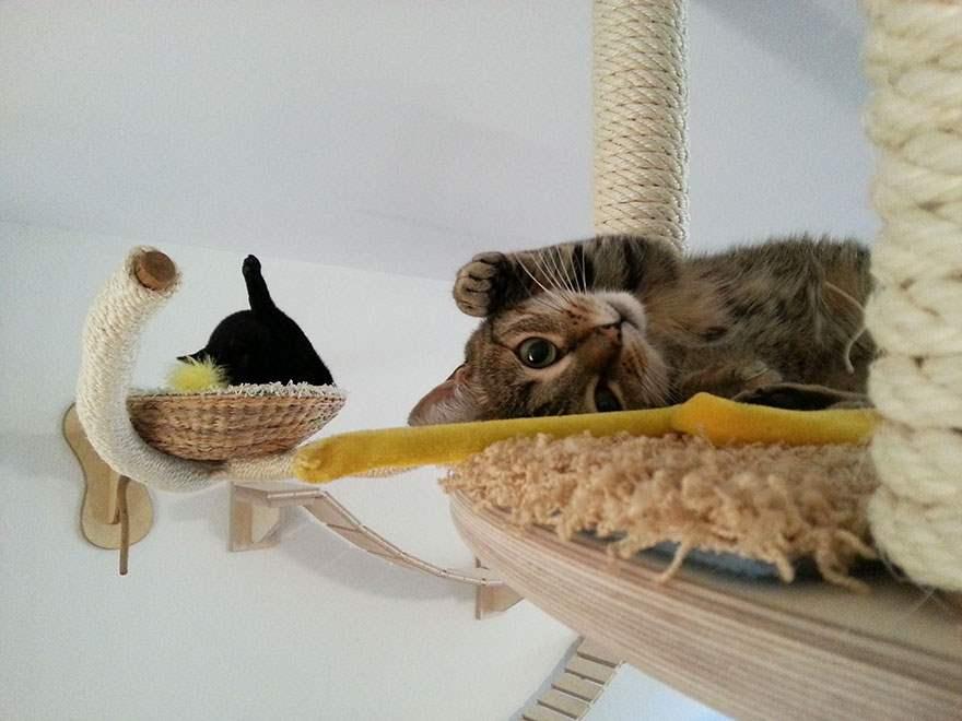 cat-furniture-creative-design-371