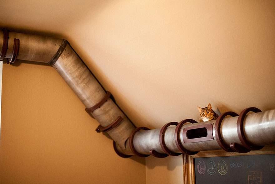 cat-furniture-creative-design-7