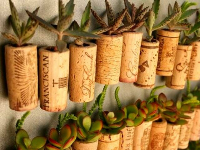 dfy-tiny-gardens-wine-cork-934x