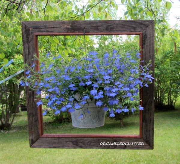 flower-pot-in-frame