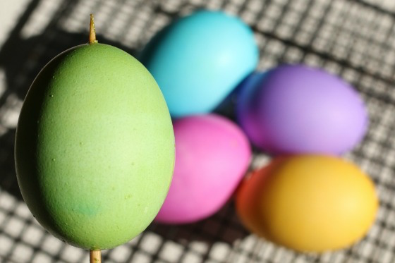 green-blue-pink-purple-and-yellow-eggs-dyed-with-Wilton-icing-gels